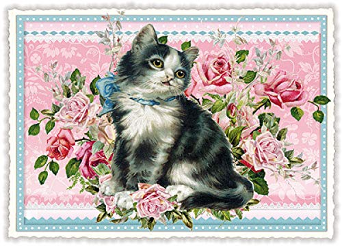 Postkarte * Katze * Edition Tausendschön