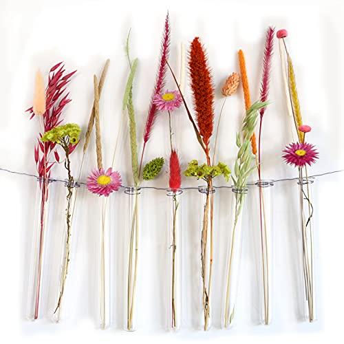 12 reagenzgläser für Blumen zum aufhängen, Reagenzglas Vase mit Rand zum aufhängen, Fensterdeko hängend, Vase Glas, Hochzeitsdeko Blumen (15 cm)