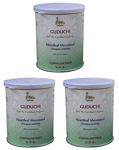 Guduchi Bio (108 Veg Kapseln - 3er pack) - Tinospora cordifolia 500mg je Kapsel - 100% Bio-zertifiziertes pflanzliches Nahrungsergänzungsmittel der Lacon GmbH
