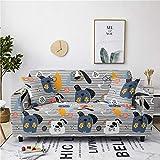 Gris Funda de Sofá 1/2/3/4 Plazas Fundas para Sofa Elástica Cubre Sofá Universal Perro Azul Funda de Sofá Antisuciedad Funda Sofá Printed Protector de Sofá O Sillón 2 Plazas: 145-185 Cm