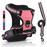 Belababy Excellent No Pull Dog Harness and Lead Set, Breathable Adjustable Comfort, Kitten Easy to Use Harnesses Buckle for Puppy Animals, Small Medium Large Dog and Cat, Training Walking Pink S