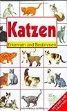 Katzen. Erkennen und Bestimmen