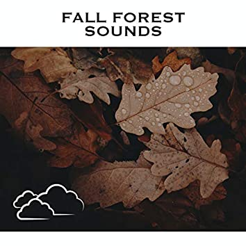 Fall Forest Sounds
