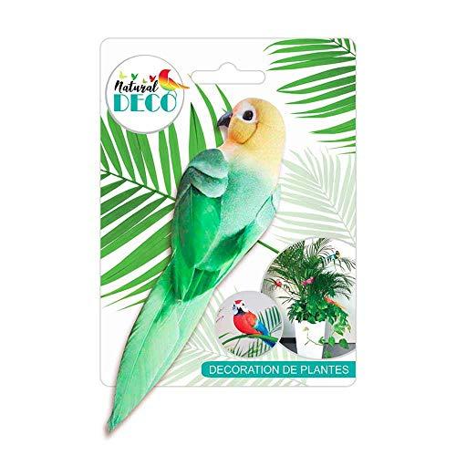 STC Déco Plantes – Medium Oiseau Vert CD3827