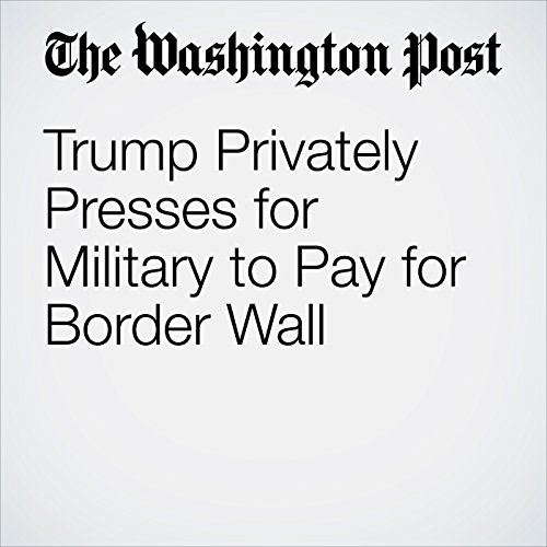 Trump Privately Presses for Military to Pay for Border Wall copertina