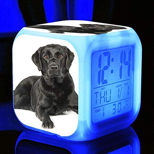 HUA5D Despertador Digital Perro Mascota Infantil Regalos De Cumpleaños Wake Up Light Alarm Clocks Niño & Niña Dormitorio Decorar-Niños 7 Color Cambiante Luz Nocturna Lampara De Cabecer(B254)