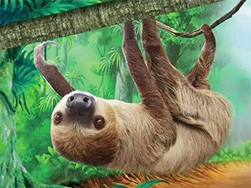 Forest Animal Sloth Diamond Painting Kit, 5D Diamond Painting Full Diamond, Diamond Art Suitable for Leisure and Home Wall Decoration (Full Square 50x60cm)