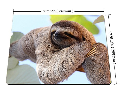 Smooffly Happy Sloth Mouse Pad,Funny Sloth in Costa Rica's Manuel Antonio Park Customized Rectangle Non-Slip Rubber Mousepad Photo #5