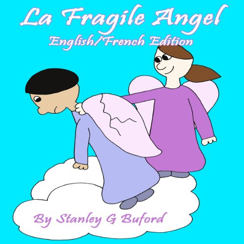 The Fragile Angel audiobook cover art