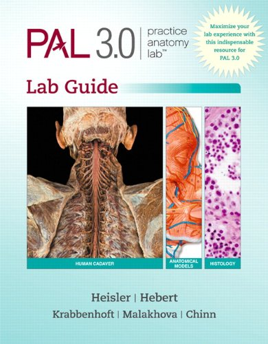 Practice Anatomy Lab 3.1 Lab Guide