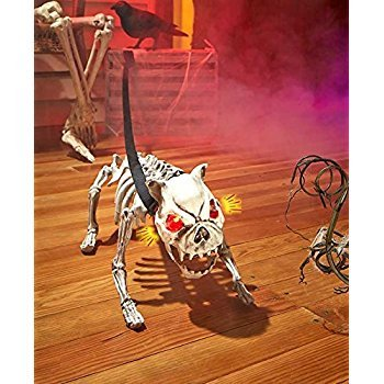 Sound Activated Barking Skeleton Dog