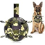 Hetoo - Balón de fútbol interactivo para perros, juguete para el arrastre, juguete para el agua para perros, bolas duraderas para perros pequeños y medianos