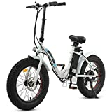 ECOTRIC Powerful 500W Folding Electric Bicycle...