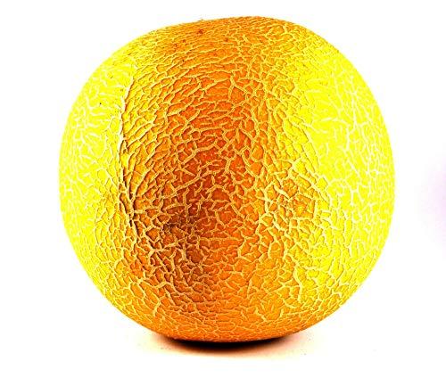 Galia Melonen süß, saftig und aromatisch, Große Frucht