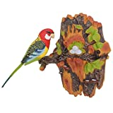 Velocity Toys Chirping & Dancing Bird- Color Vary - Motion Sensor
