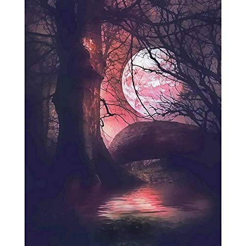 Oil Painting By Numbers Moon Light Landscape Paint By Number HandPainted Coloring Draw Craft Diy Gift A11 60x80cm