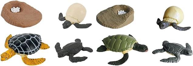 BESTONZON 2 Sets/8pcs Sea Turtle Life Cycle Figurine Tortoise Wild Animal Figures Tortoise Life Cycle Figurines Growth Cyc...