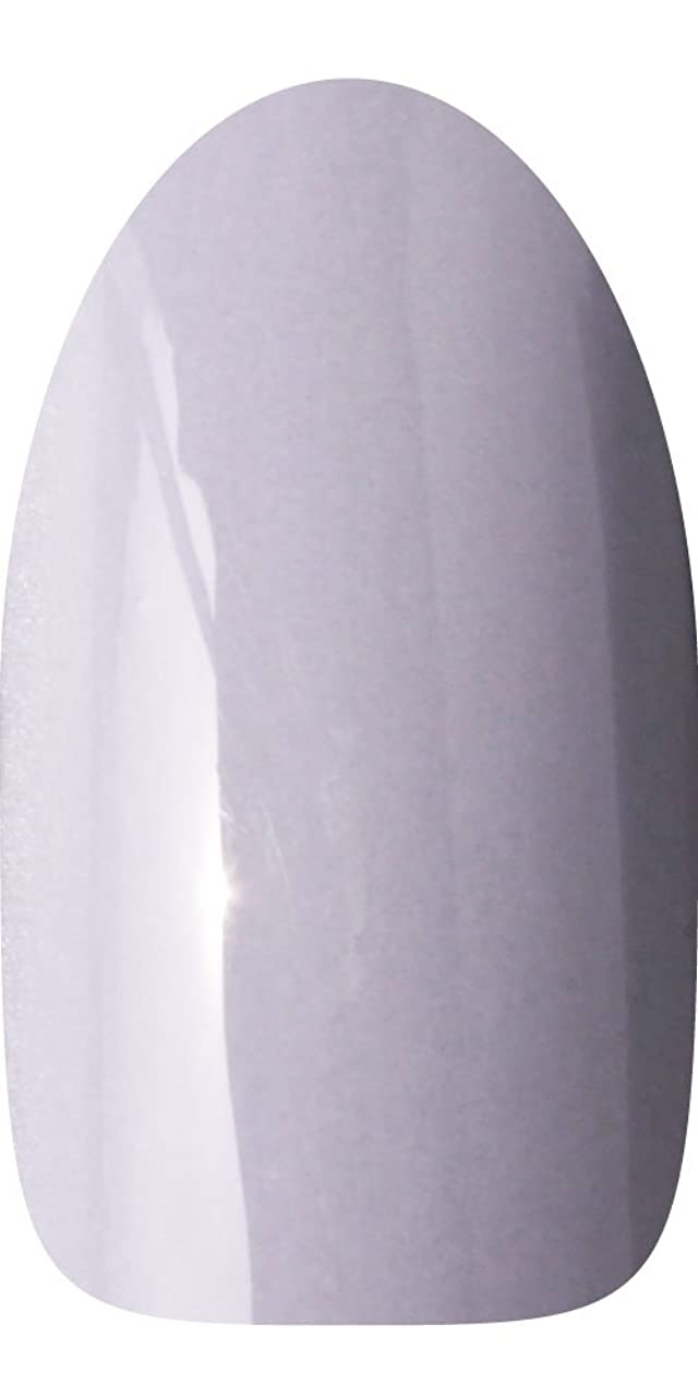 ポルトガル語切り離す余剰sacra カラージェル No.064 薄墨