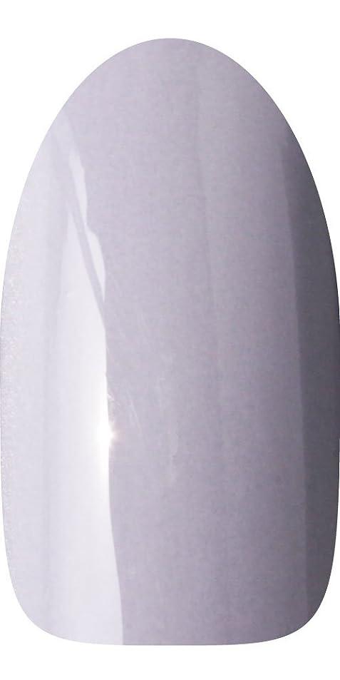 均等に鎖禁止するsacra カラージェル No.064 薄墨