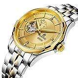 Relojes de negocios para hombres, relojes mecánicos completamente automáticos, relojes a prueba de agua hasta 5 ATM, relojes luminosos de acero inoxidable para hombr gold