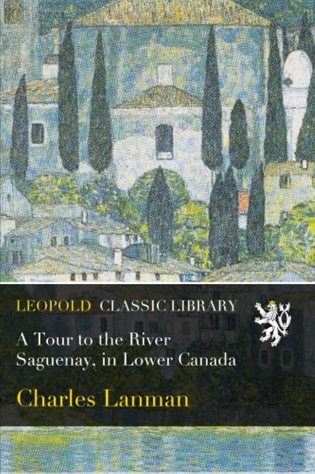 発疹絶滅したアンケートA Tour to the River Saguenay, in Lower Canada