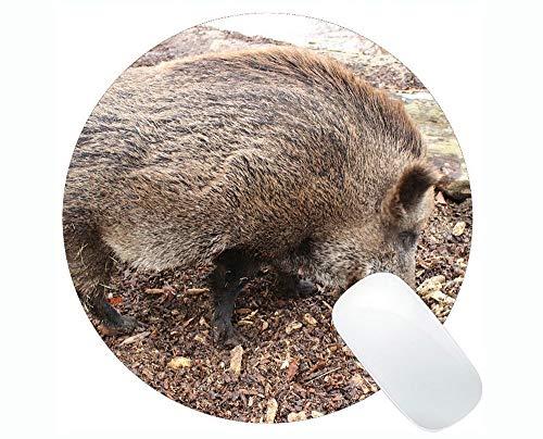 Schwein kundengebundenes dauerhaftes Zuhause und Büro Mousepad Eber-neues Jahr des Schwein-Spiels runde Mausunterlage