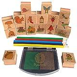 Mystical Lands Fairy Garden Forest Wooden Rubber Stamp Set for DIY Picture Making Cards Scrapbooking Crafts