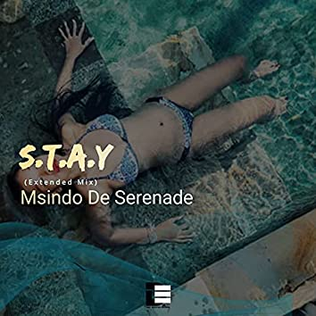 S.T.A.Y (Extended Mix)