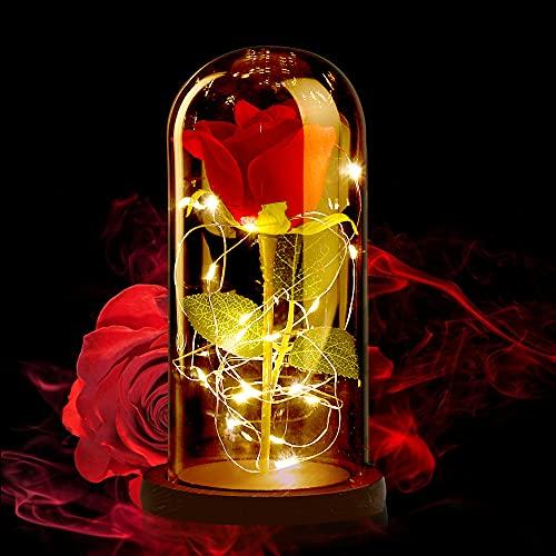 ASANMU Kit de rosas La Bella y la Bestia, pétalos de rosa elegante cúpula de cristal con base de pino luces LED, regalos decoración para San Valentín, aniversario de boda, vacaciones, día de la madre