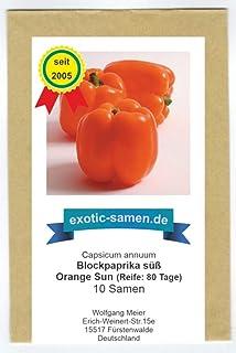 Orange Sun - süßer Paprika - 10 Samen