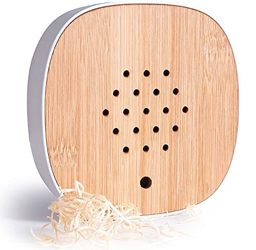 ambiamor Vogelgezwitscher Bewegungsmelder-Box mit 3 Wechselcovern und 2 Tonspuren - Vogelgesang & Waldquelle