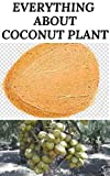 EVERYTHING ABOUT COCONUT PLANT: The Healthy benefit of coconut parts to the body and our daily food nutritional