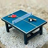 Anniston Dollhouse Furniture, Children Gift 1:12 Dollhouse Miniature Table Tennis Set Realistic Wooden Toy...