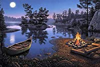 Bcbfgfdgbz クロスステッチキット刺繍キット DIY 手作り- 14CT プレプリント刺繡工芸品のフルレンジを初心者向けマルチカラーパターンスターターキット室内装飾40×50cm月夜の湖