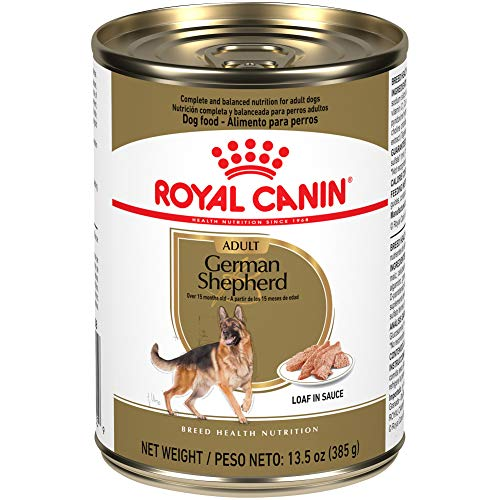 commercial Royal Canin Breed Health Nutrition German Shepherd Rolls in Sauce, Canned Dog Food, 13.5 oz… foods for german shepherd puppies