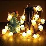 Pine Cone String Light 40 LED 19.6 ft, Remote Control & USB Powered Lights Decorations for Indoor, Outdoor, Wedding, Easter, Birthday, Party, Christmas, Warm White
