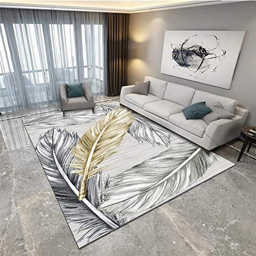 Pgron Alfombra Salón Manta de Mesa de té de Plumas Abstracta Alfombra de Tierra Lavable desechable para el hogar Moderna de fácil Cuidado,100×160cm