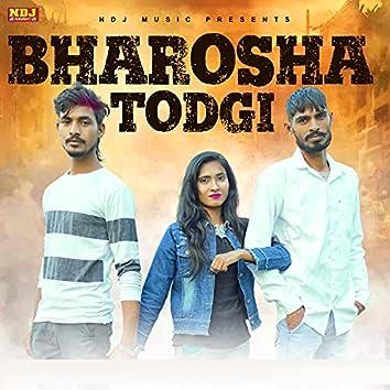 Bharosha Todgi