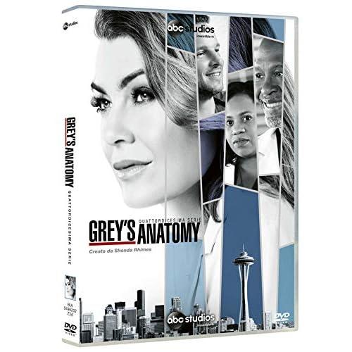 Grey's Anatomy, Vol. 14 (Box Set) (6 DVD)