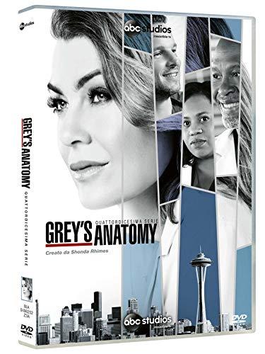 Grey\'s Anatomy, Vol. 14 (Box Set) (6 DVD)