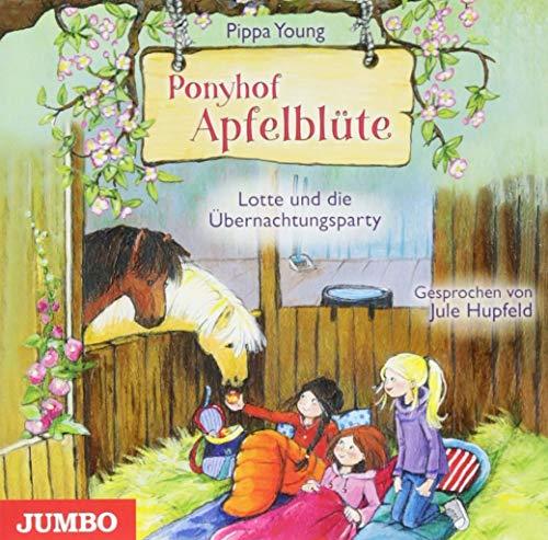 Lotte und die Übernachtungsparty Titelbild