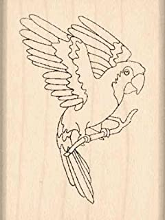 Stamps by Impression Parrot Rubber Stamp