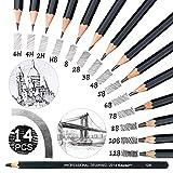 Juego de 14 lápices de grafito graduados, 8B, 7B, 6B, 5B, 4B, 3B, 2B, B, B, HB, F, H, 2H, 2H, lápices de arte profesionales para niños, estudiantes, principiantes y artistas