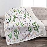 Jekeno Llama Alpaca Sherpa Blanket Cartoon Cute Soft Throw Blanket for Sofa Chair Bed Office Travelling Camping 50'x60'