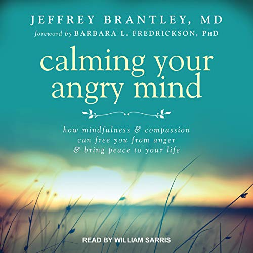 Calming Your Angry Mind Titelbild