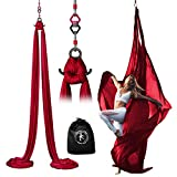 Professional 11 Yards Aerial Silks Equipment for All Levels - Medium Stretch Aerial Yoga Swing & Hammock Kit - Perfect for Indoor Outdoor Aerial Dance, Circus Arts – ALL Hardware Included