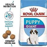 Royal Canin Giant Puppy 34 Welpenfutter, 15 kg – Hundefutter - 2