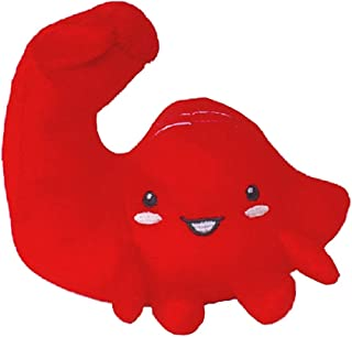 ぬいぐるみ 臓器 人体 内臓 目 心臓 胃 筋肉 うんち うんこ 腸 脳 肺 お見舞い 快気祝い 健康祈願 還暦 病院 理科 誕生日 プレゼント 知育 おもしろい おもちゃ 玩具 人形 クリニック (筋肉)