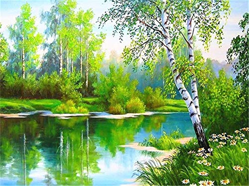 5D DIY Diamond Painting by Number Kit Forest Landscape Square Drill,120x90cm Adults and Kids Full Drill Beads Crystal Rhinestone Embroidery Cross Stitch Supplies Arts Craft for Home Wall Decor U3630