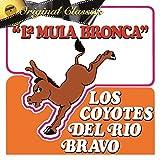 La Mula Bronca